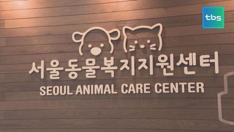 [tbs] 서울동물복지지원센터 28일 개관